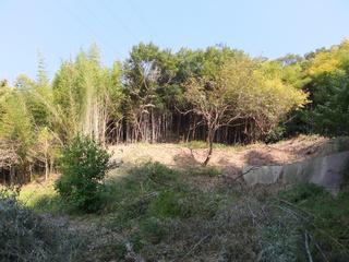 20121107_004.jpg