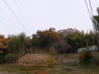 20121129_002.jpg