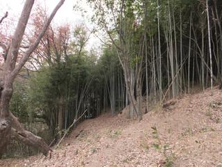 20121213_006.jpg